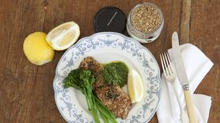 Dukkah crusted snapper with kale pesto overheadshot  2  approved