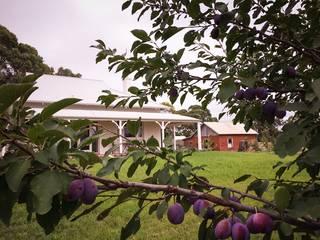 Orchard_house_outside_4