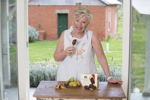 Maggie burnt fig ice cream sticks 51c6653