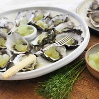 J d oysters with cucumber verjuice jelly 4 approved 1